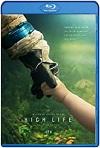 High Life: Espacio Profundo (2018) HD 720p Latino