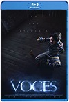 Voces (2020) HD 1080p Castellano