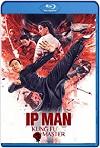 IP Man: El maestro del kung fu (2019) HD 720p Latino