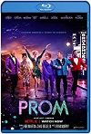 El baile / The Prom (2020) HD 1080p Latino