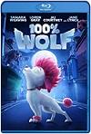 100% Lobo (2020) HD 720p Latino
