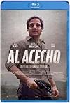 Al Acecho (2019) HD 1080p Latino