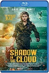 Shadow in the Cloud (2020) HD 720p Latino