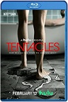 Tentacles (2021) HD 720p Latino