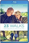 23 Walks (2020) HD 720p