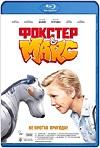 Foxter y Max Un Perro De Otro Mundo (2019) HD 720p Latino