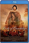 Nuestra Señora de Guadalupe (2020) HD 720p Latino