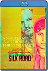 Silk Road (2021) HD 1080p Latino