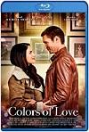Los colores del amor (2021) HD 720p Latino