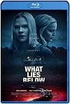 What Lies Below  / Secreto Oscuro (2020) HD 720p Latino