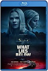 What Lies Below  / Secreto Oscuro (2020) HD 1080p Latino