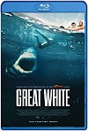 Great White / Tiburón blanco (2021) HD 1080p Latino