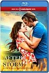 Después de la Tormenta (2019) HD 1080p Latino