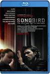 Songbird / Infectados (2020) HD 1080p Latino