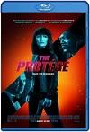 The Protégé (2021) HD 720p