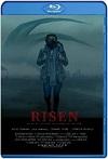 Risen (2021) HD 720p