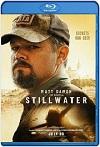 Stillwater / Cuestión de sangre (2021) HD 720p latino