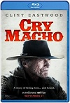 Cry Macho (2021) HD 720p Latino