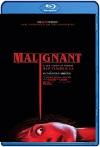 Maligno (2021) HD 1080p Latino