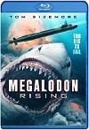 Megalodon Rising (2021) HD 1080p