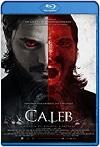 Village of the Vampire (2020) HD 720p Latino