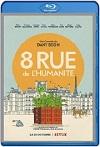 Calle de la Humanidad, 8 (2021) HD 1080p Latino