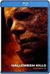 Halloween Kills: La noche aún no termina (2021) HD 1080p Latino