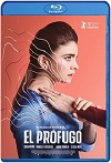 El prófugo (2020) HD 1080p Latino